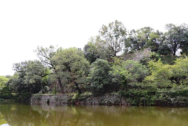 桜堀から眺める本丸石垣