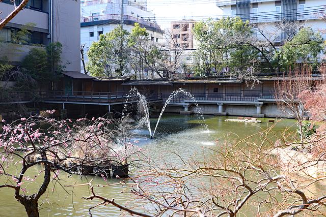 生田神社境内・生田の池