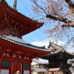 長遠寺|尼崎寺町のシンボル、慶長年間建立の多宝塔(兵庫名所巡り)