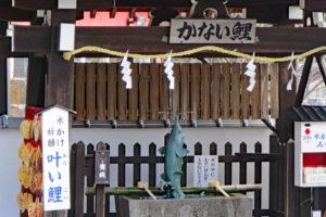 北野天満神社・叶い鯉