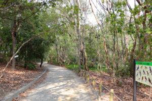 昆陽池公園・ふるさと小径