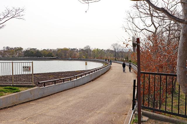昆陽池公園・貯水池付近