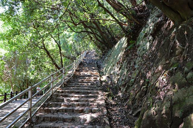 布引ハイキングコース・雄滝への石段
