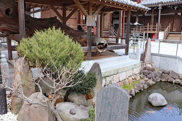 須磨寺・義経腰掛け松と首洗い池