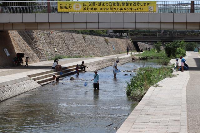 住吉川で川遊び