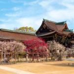 北野天満宮|学問の神を取り囲む梅・もみじ、そして牛(京都名所巡り)