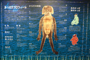 黄桜記念館・カッパ説明パネル