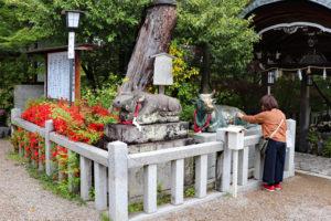 長岡天満宮・拝殿前の神牛像