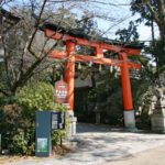 宇治神社|境内で見かける「うさぎ」は神のお使い(京都名所巡り)