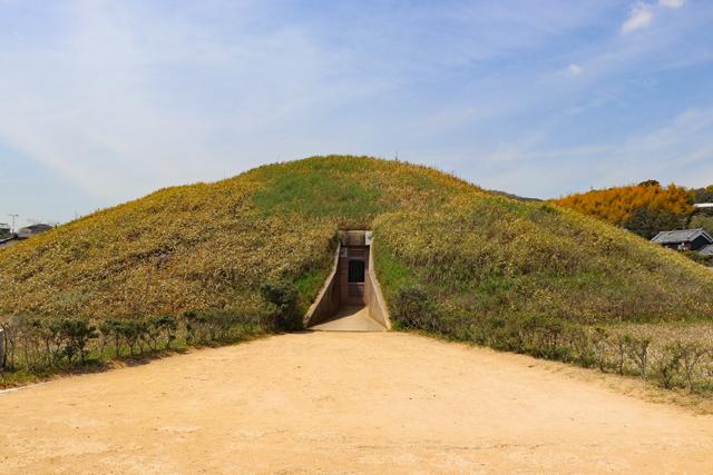 藤ノ木古墳の横穴