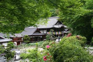 岡寺の境内風景