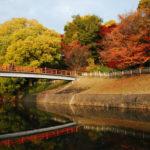 竜田公園|百人一首にも登場!古より知られる紅葉の名所(奈良名所巡り)