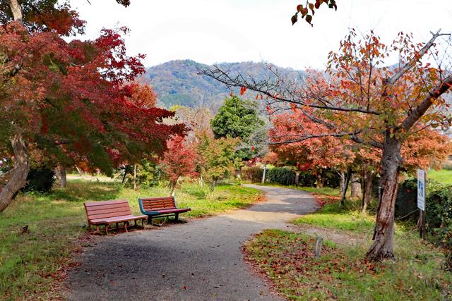 竜田公園遊歩道
