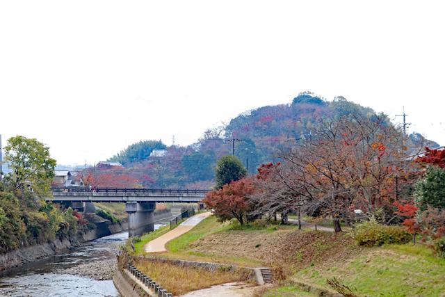 竜田川と三室山