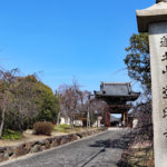 道明寺|菅原道真手彫りと伝わる、国宝十一面観音(大阪名所巡り)