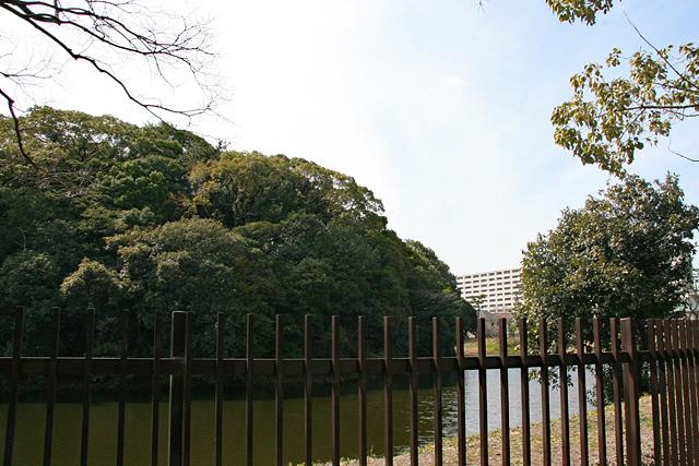方違神社境内から反正天皇陵を眺める