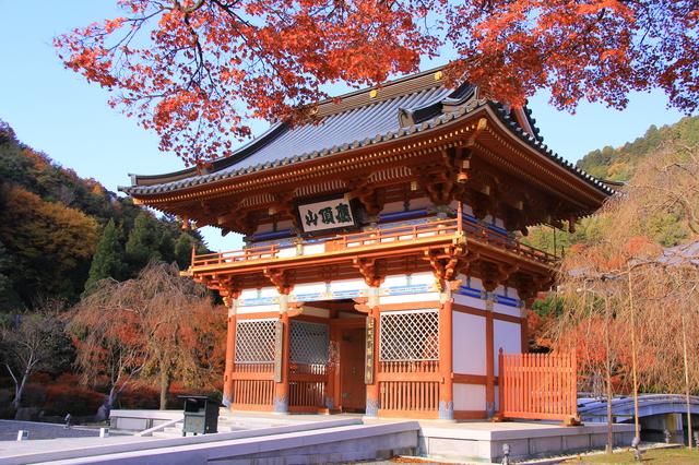 勝尾寺・山門と紅葉