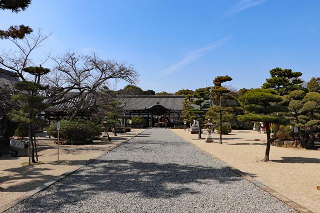 誉田八幡宮境内風景