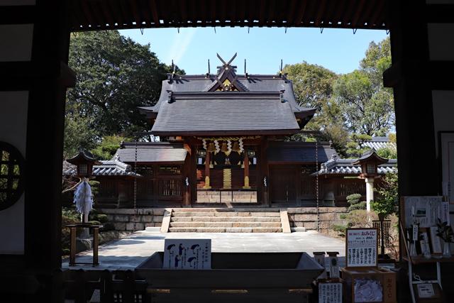 誉田八幡宮・拝殿から本殿を拝む