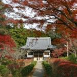 紅葉に彩られた龍泉寺境内