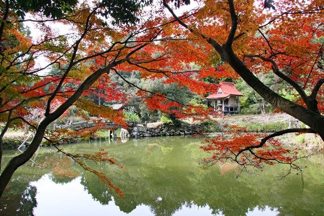 龍泉寺庭園・池と中島