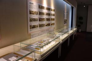 造幣博物館3階・江戸時代の小判