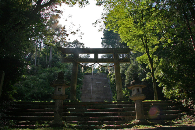 日吉東照宮・鳥居と石段
