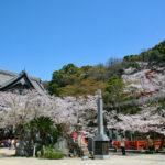 紀三井寺|西国札所の境内から名勝和歌浦を一望!(和歌山名所巡り)